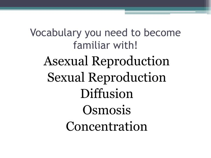 Vocabulary you need to become familiar with!