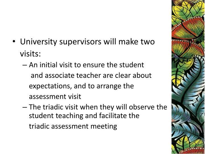 University supervisors will make two