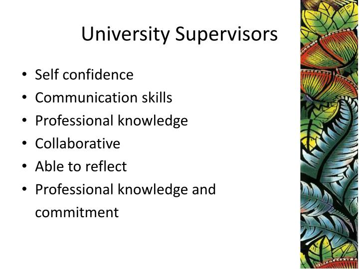 University Supervisors