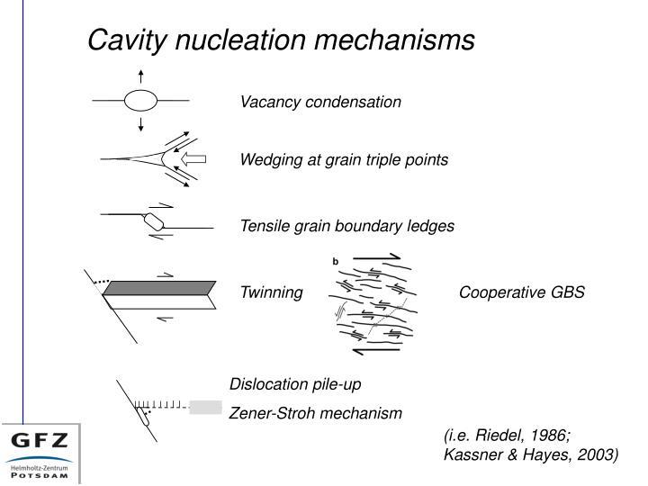 Cavity nucleation mechanisms