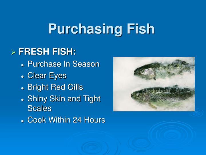Purchasing Fish
