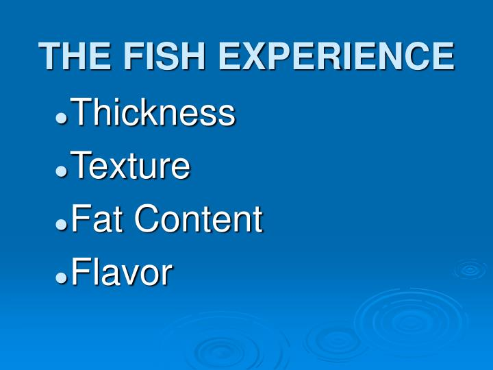 THE FISH EXPERIENCE