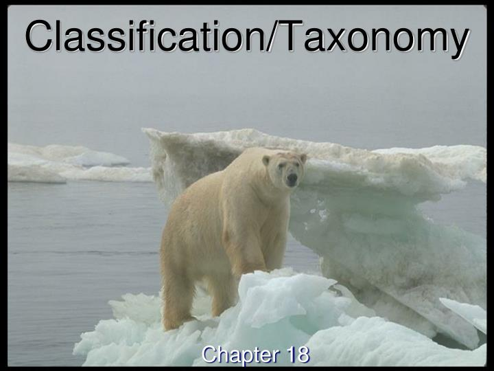 Classification taxonomy