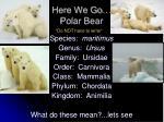 here we go polar bear