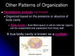 other patterns of organization2