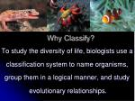 why classify