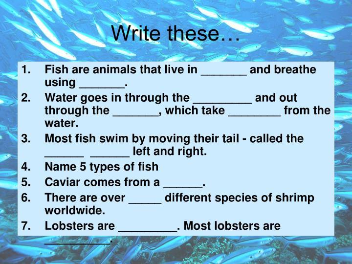 Write these…