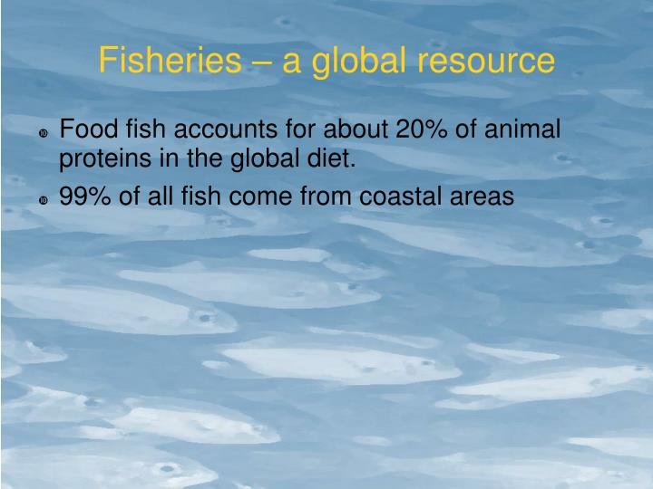 Fisheries – a global resource
