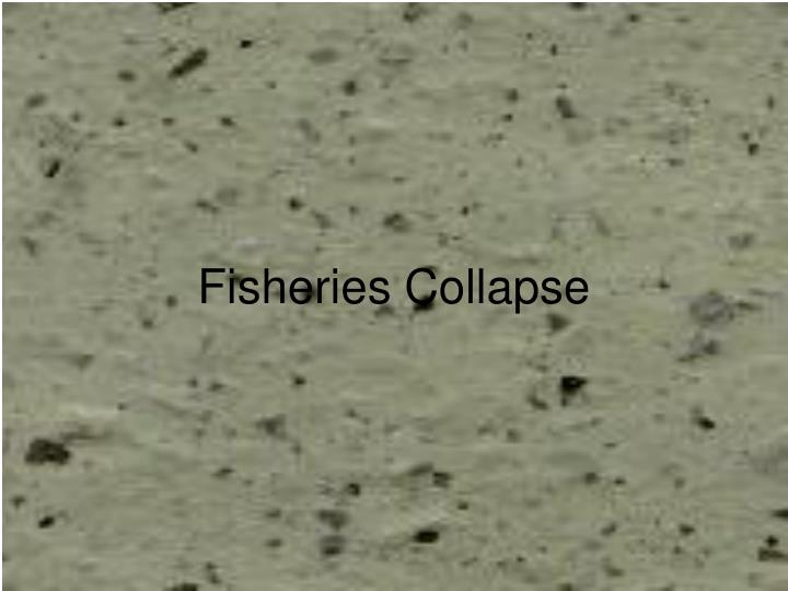 Fisheries collapse1