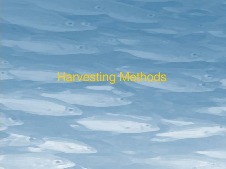 Harvesting Methods