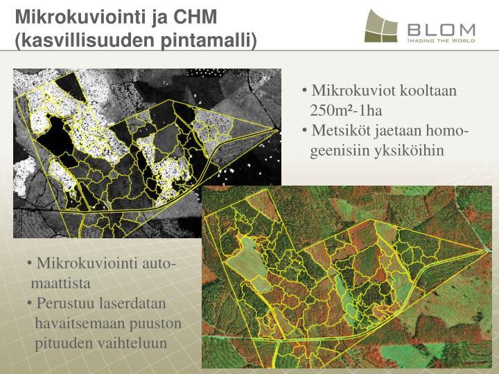 Mikrokuviointi ja CHM (kasvillisuuden pintamalli)