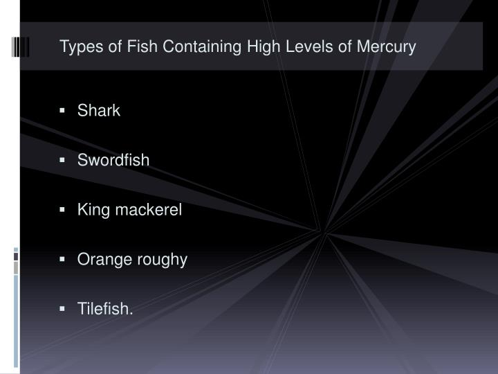 Types of Fish Containing High Levels of Mercury