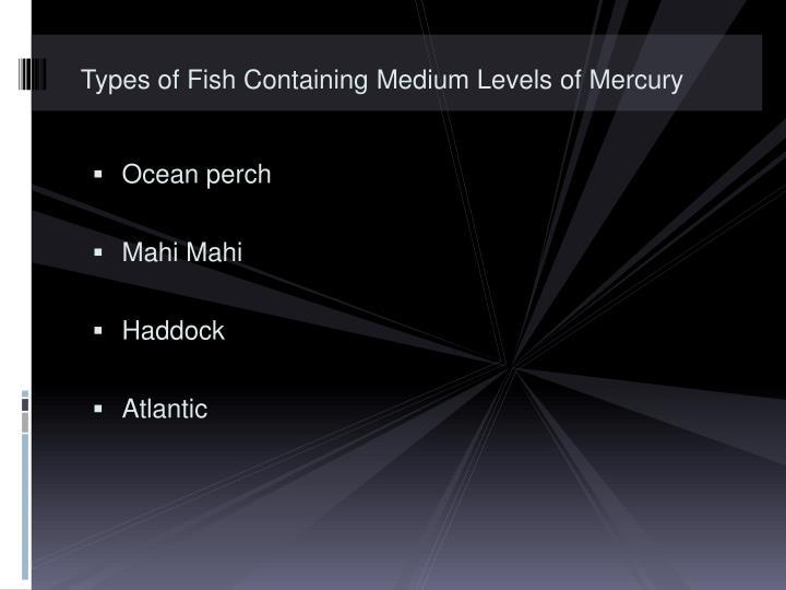 Types of Fish Containing Medium Levels of Mercury