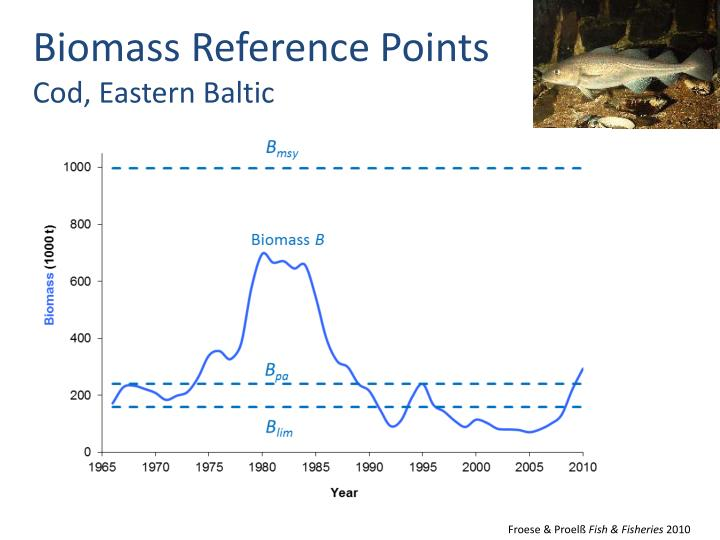Biomass Reference Points