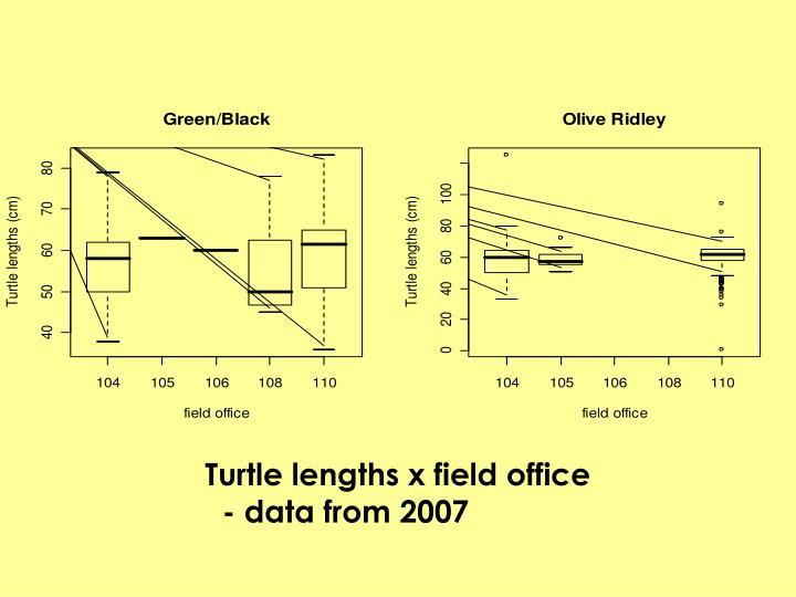 Turtle lengths x field office