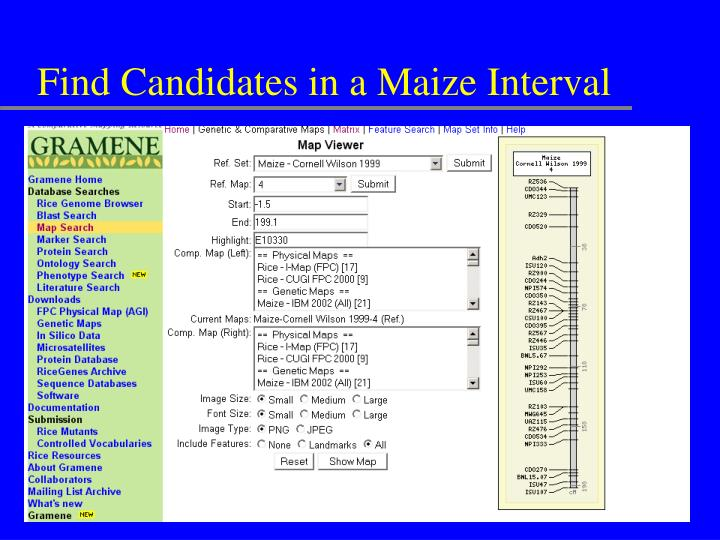 Find Candidates in a Maize Interval