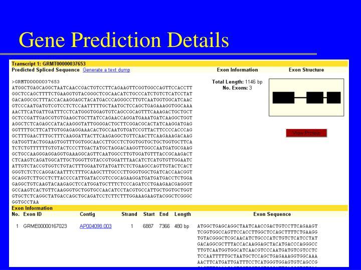 Gene Prediction Details