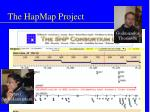 the hapmap project