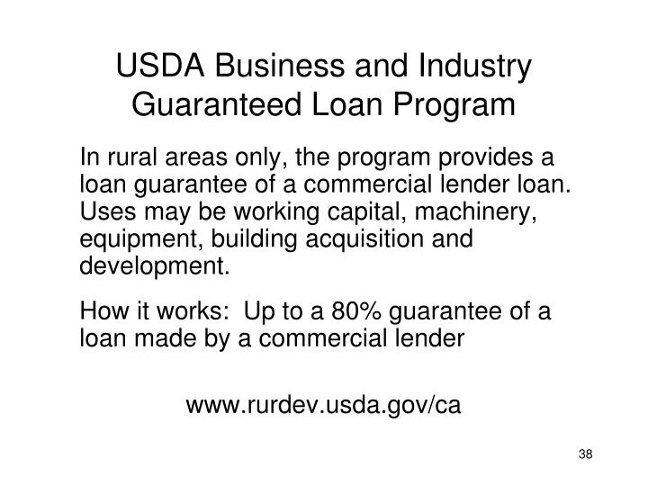 USDA Business and Industry Guaranteed Loan Program