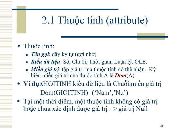 2.1 Thuộc tính (attribute)
