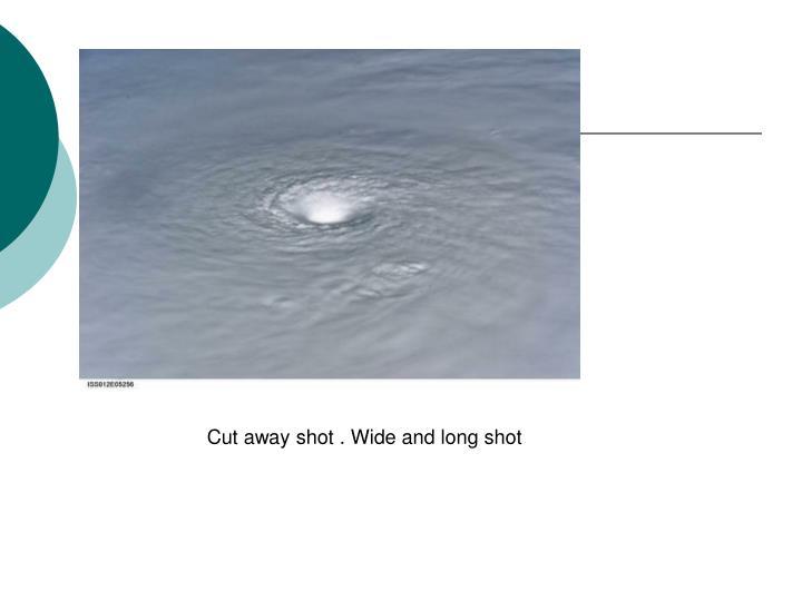 Cut away shot . Wide and long shot