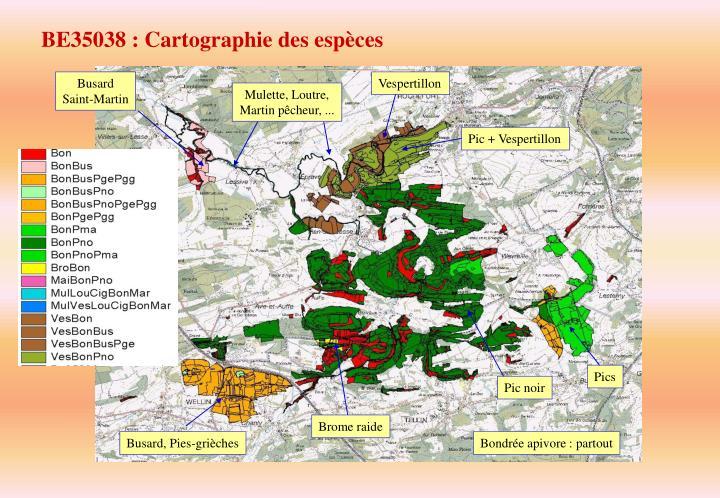 BE35038 : Cartographie des espèces