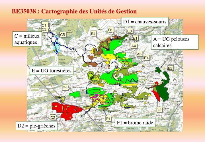 BE35038 : Cartographie des Unités de Gestion