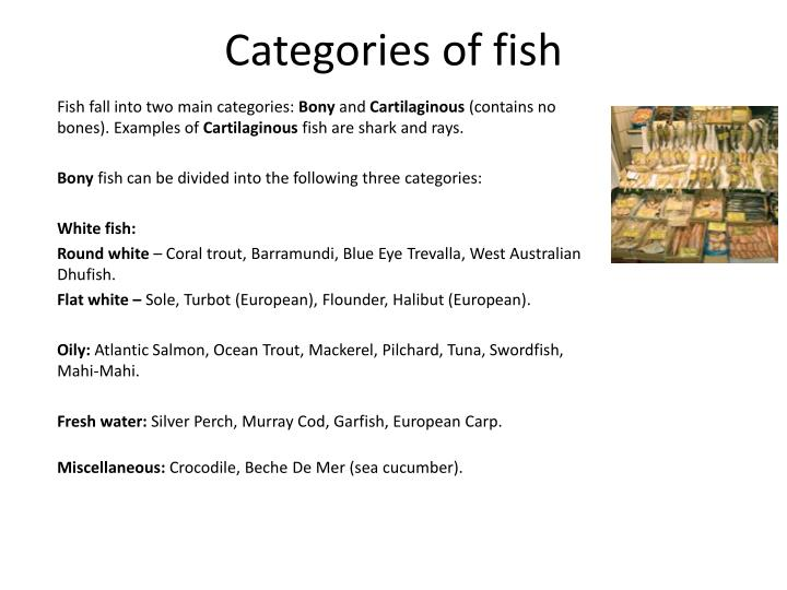 Categories of fish