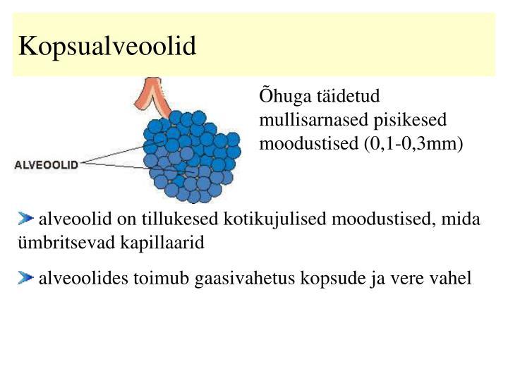 Kopsualveoolid