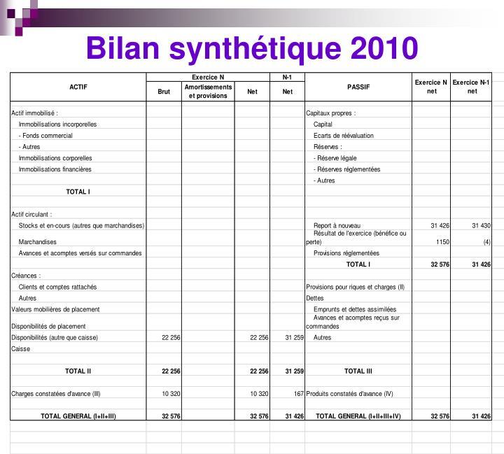 Bilan synthétique 2010