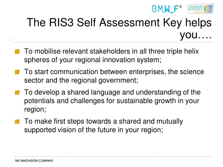 The RIS3 Self Assessment Key helps you….