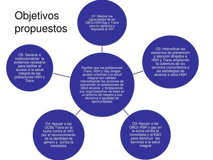 Objetivos propuestos