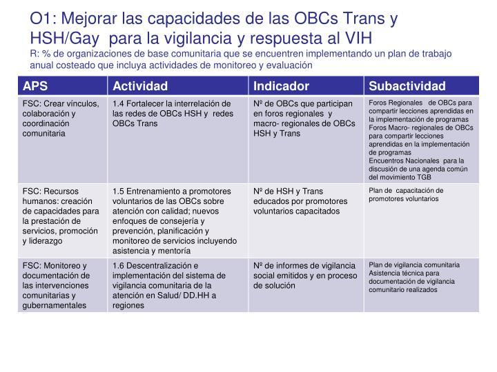 O1: Mejorar las capacidades de las OBCs Trans y HSH/Gay  para la vigilancia y respuesta al VIH