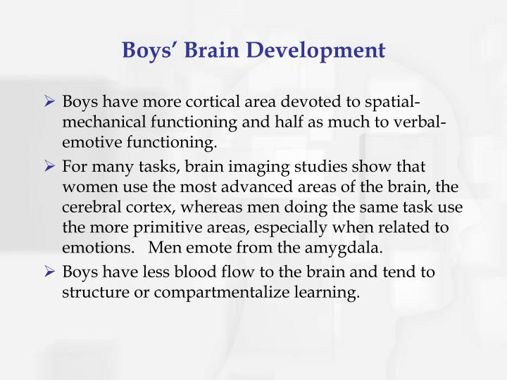 Boys' Brain Development