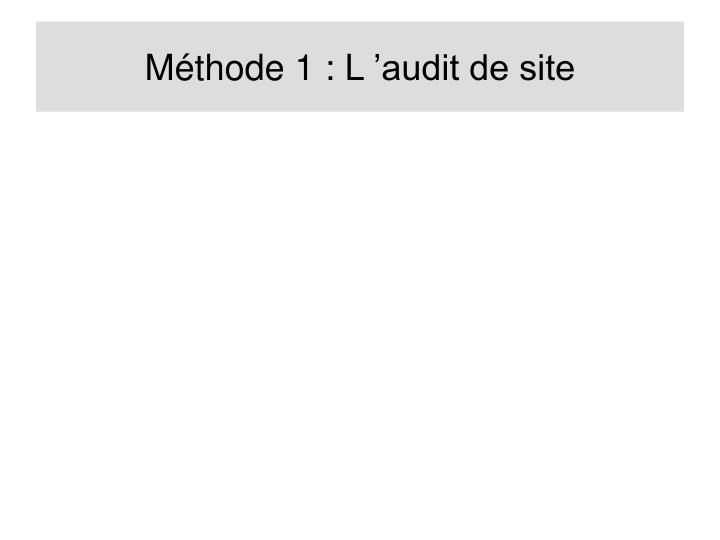 Méthode 1 : L'audit de site
