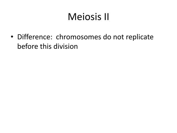 Meiosis II