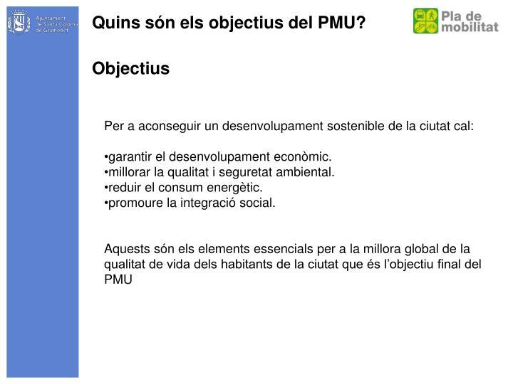 Quins són els objectius del PMU?