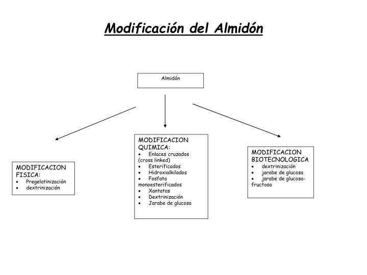 Modificación del Almidón
