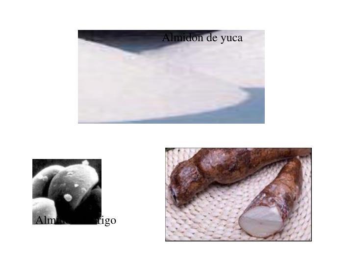 Almidon de yuca