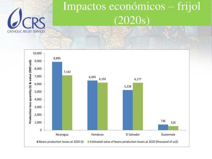 Impactos económicos – frijol (2020s)