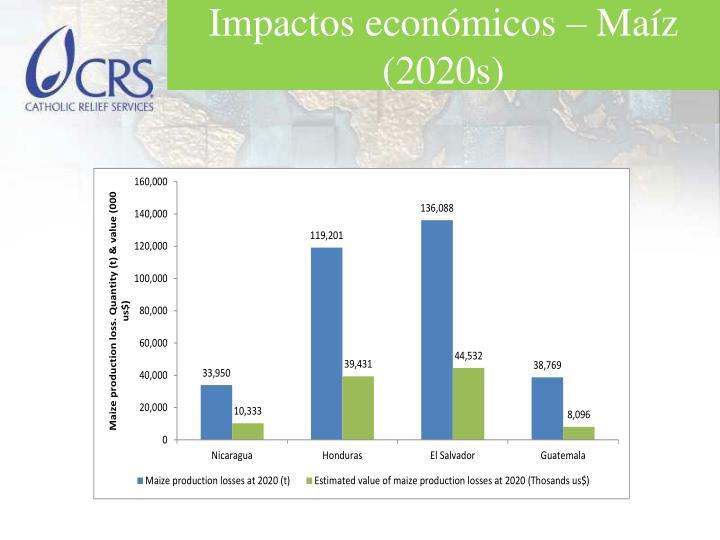 Impactos económicos – Maíz (2020s)