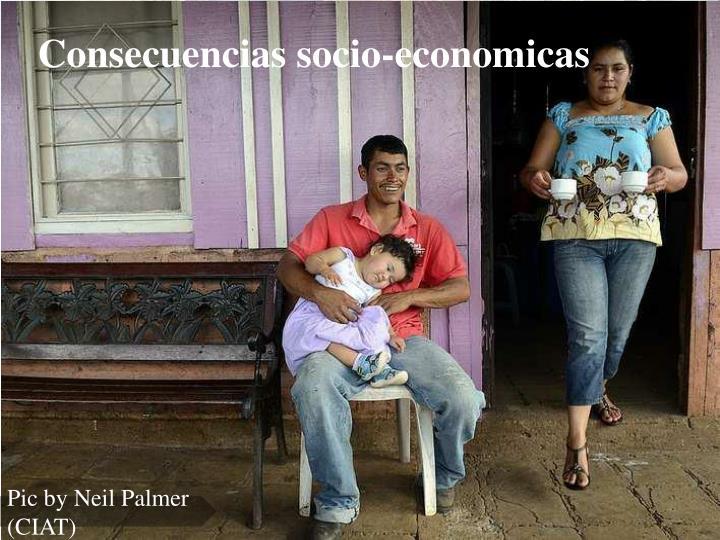 Consecuencias socio-economicas
