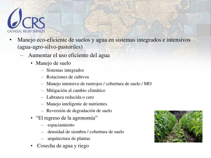 Manejo eco-eficiente de suelos y agua en sistemas integrados e intensivos (agua-agro-