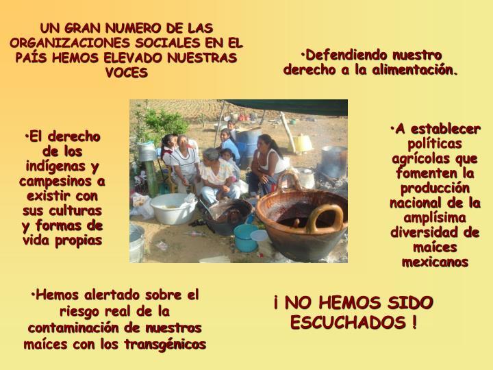 UN GRAN NUMERO DE LAS ORGANIZACIONES SOCIALES EN EL PAÍS HEMOS ELEVADO NUESTRAS VOCES