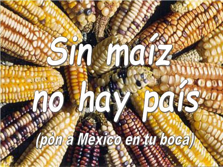 Sin maíz