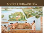 agricultura asteca