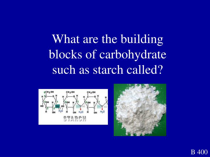 What are the building blocks of carbohydrate such as starch called?