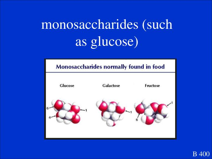 monosaccharides (such as glucose)