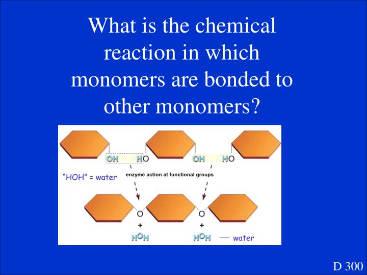 What is the chemical reaction in which monomers are bonded to other monomers?