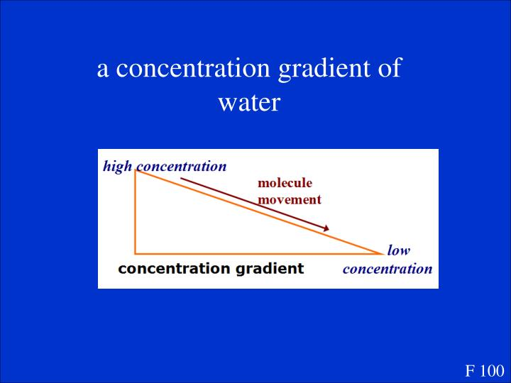 a concentration gradient of water